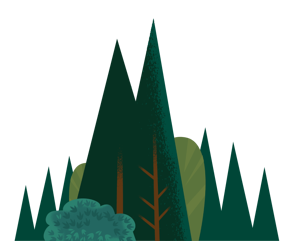 SectionFronts-Backgrounds-Trees